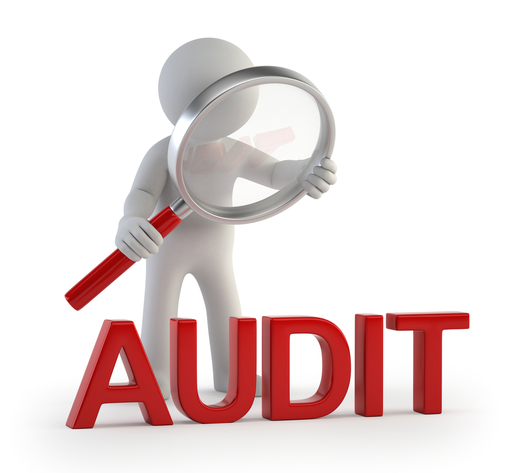 what do we know about audit What do we know about audit quality the british accounting review (december 2004), vol 34, no 4, pp 345-368 what do we know about audit quality // trulaske college of business // university of missouri.